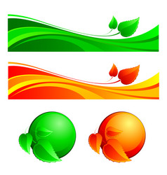 vegetative ornament vector image