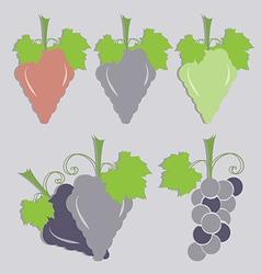 set of grape icon vector image