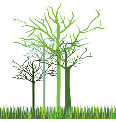 leafless green trees icon vector image vector image
