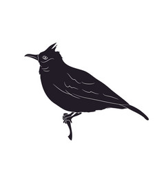 Bird sitting on a branch silhouette vector