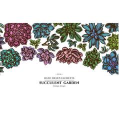 Floral design with colored succulent echeveria vector