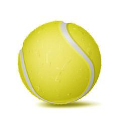tennis ball sport game fitness symbol vector image
