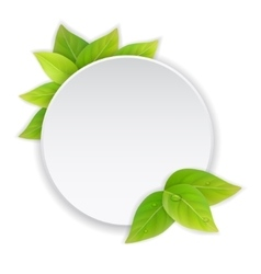 Circular paper label with green leaves vector image vector image