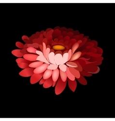 Flower element on black background vector image vector image