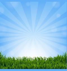 grass border with sunburst vector image vector image