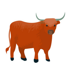 brown bull with hornsmountain bull is a symbol of vector image