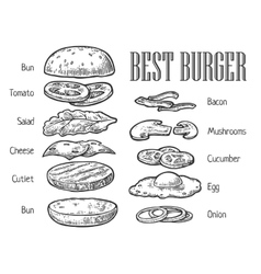 Burger ingredients vintage engraving vector