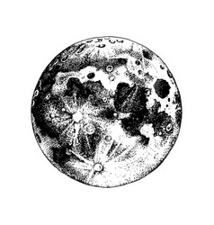 hand drawn moon vector image