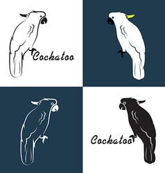 image an cockatoo vector image