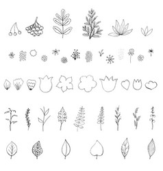 Objects isolated on white background vector