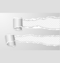 realistic torn and twisted paper strip torn paper vector image