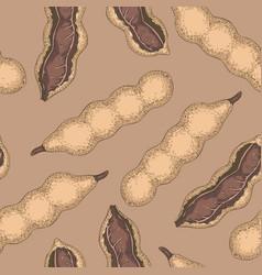 seamless pattern ripe tamarind vector image