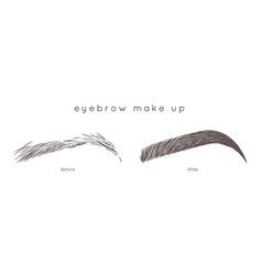 eyebrow tutorial beautiful brow step by step vector image vector image