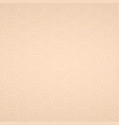 beige texture vector image vector image