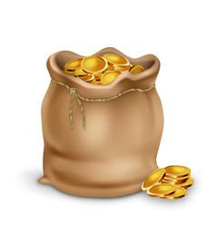 golden coin in vintage textile bag purse vector image