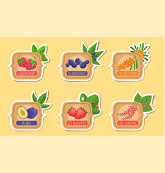 Homemade jam labels set raspberry blueberry sea vector