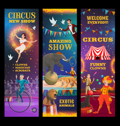 magician animals clown and acrobats in circus vector image