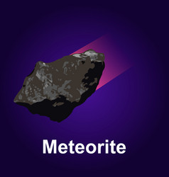 meteorite icon isometric style vector image