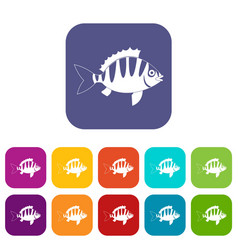 Perch icons set flat vector