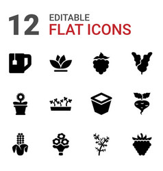12 leaf icons vector