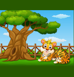 Animal tiger beside a tree inside the fence vector