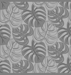 monstera leaves seamless pattern design vector image