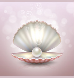 realistic beautiful natural open sea pearl shell vector image