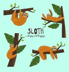 Set cute funny sloth hanging on the tree sleepy vector