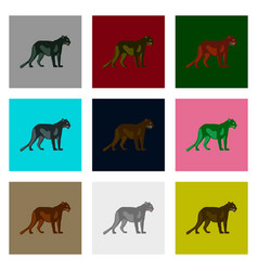 Set of in flat style panthers vector