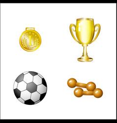cartoon sport equipment set vector image vector image