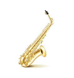 Saxophone isolated on white vector image