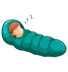Sleeping bag vector image vector image