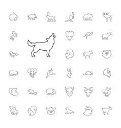 33 mammal icons vector