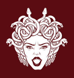 Angry gorgon with snakes and open mouth in hand vector