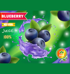 blueberry juice ads fresh blueberries in splash vector image