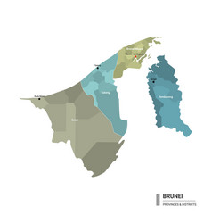 Brunei higt detailed map with subdivisions vector