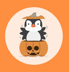 cartoon cute penguin in pumpkin vector image