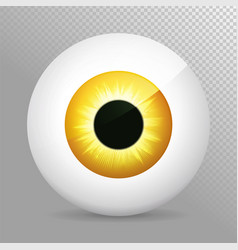 eye orange realistic 3d eyeball irispupil icon vector image