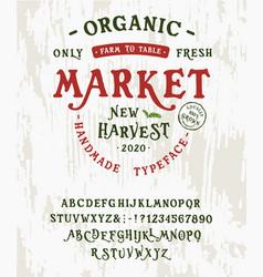 font organic market vintage typeface design vector image