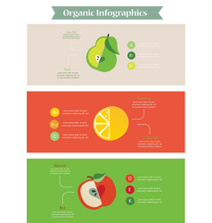 Health food infographic vector image