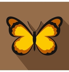 Insect butterfly with pattern on wings icon vector