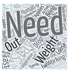 loose weight fast Word Cloud Concept vector image