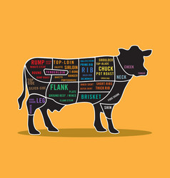 map of beef steak cuts cow infographic vector image