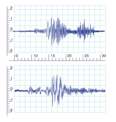 Seismographs Graph output by a seismograph vector