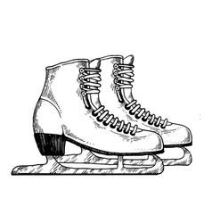 skates engraving vector image