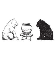 Bears 2 vintage vector