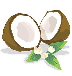 Coconutmilk vector