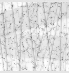 Grayscale marble theme modern abstract design vector