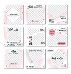 pack for instagram info sale fashion stories vector image
