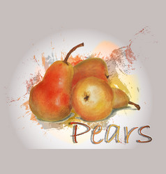 pear watercolor food vector image